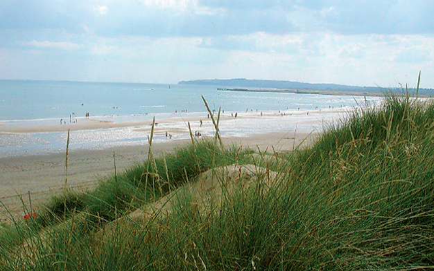 Camber Sands, Nr Rye, E Sussex