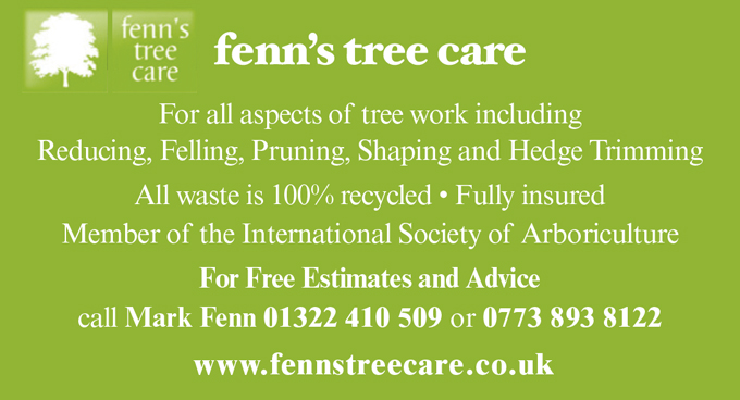 Fenn's Tree Care
